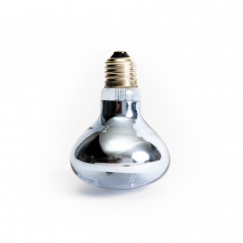 Žárovka ReptiEye 75w Daylight Neodymium - Širokospektrální